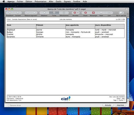 Aperçu PDF d'un tableau personnalisé créé avec Ciel Associations